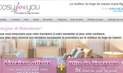 Création Newsletter Cosy For You