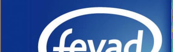 les chiffres clés de l'E-Commerce en 2017 par la FEVAD