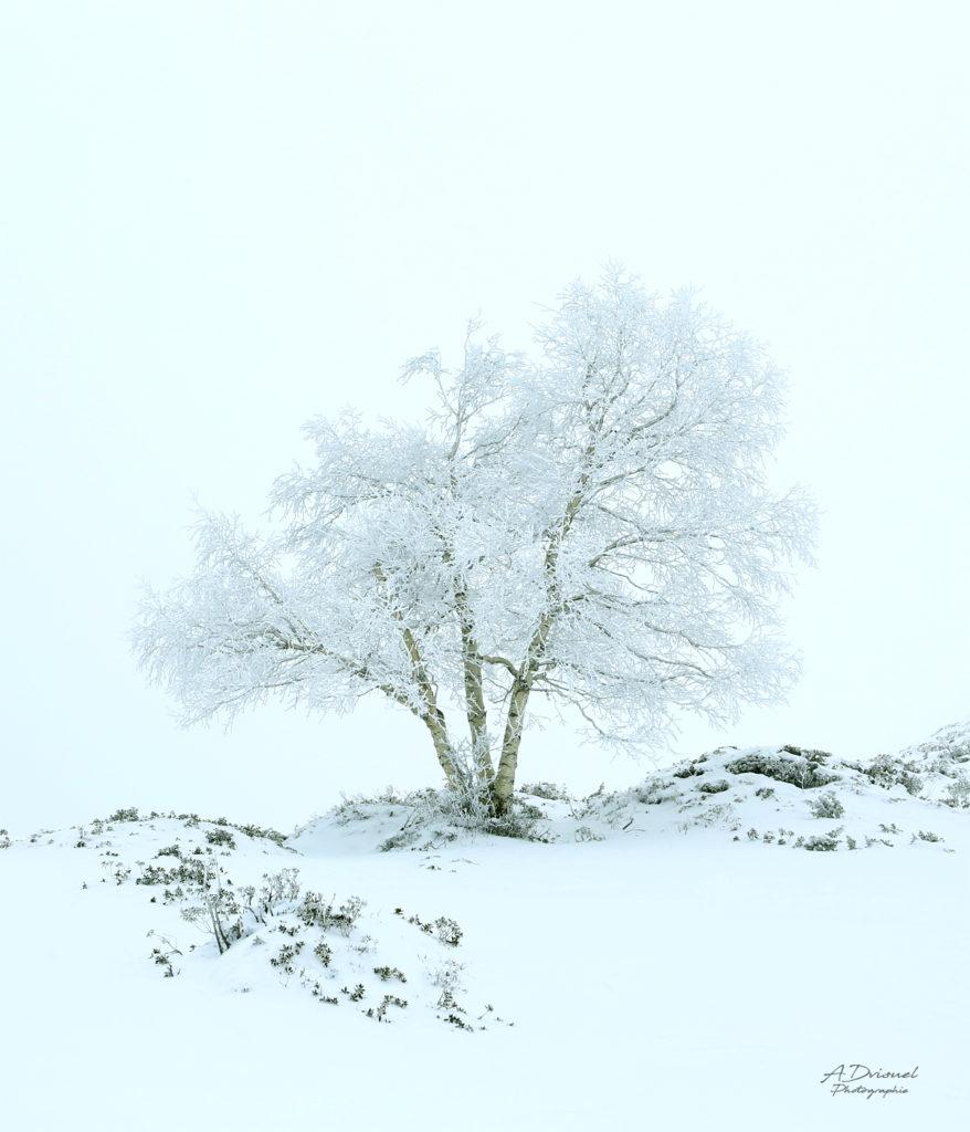 Photographies et retouche photo dans Photoshop, photographe montagne