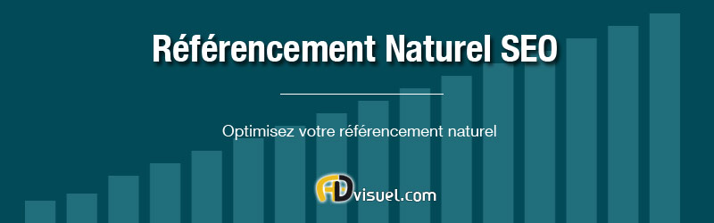 consultant seo toulouse referencement naturel