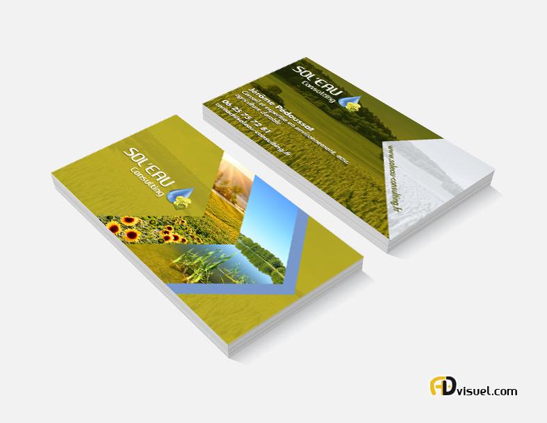 creation carte de visite consultant